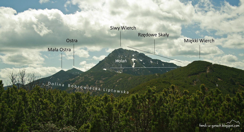 Panorama z Palenicy Jałowieckiej