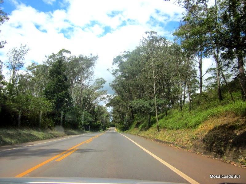 Foto da estrada BR 356