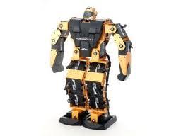 Robot Bi Pedal