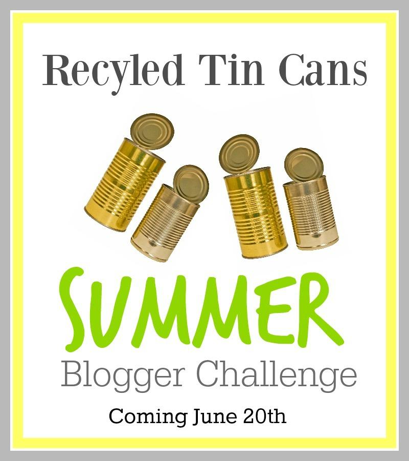 Summer Blogger Challenge