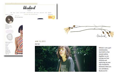 Bleubird Vintage blog