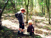 children in woodland with sun shining down
