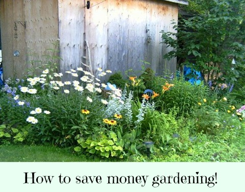 Frugal Gardening Tips Save Money Gardening Thrifty Jinxy