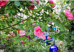 Gartendurchblick