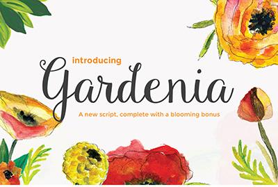 gardenia font indir, font, font indir, günün fontu, font arşivi indir, ücretsiz font indir, bedava font indir, kaliteli font indir,