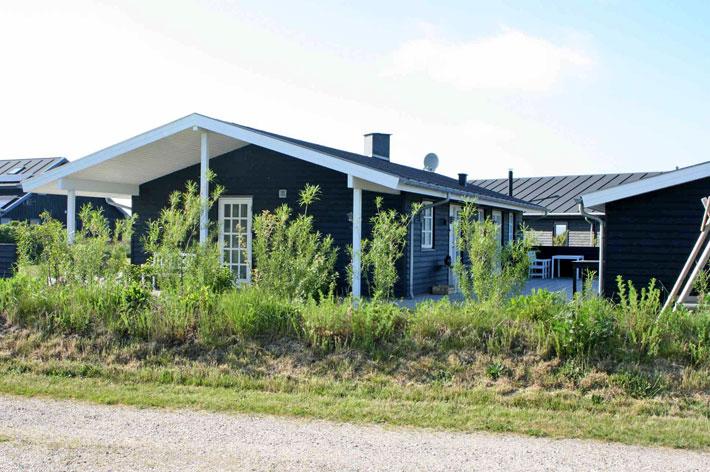Amalie loves Denmark Ferienhaus von Novasol in Westjütland