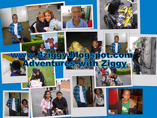 4 Ziggy