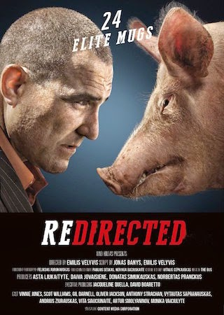 Watch Redirected (2014)