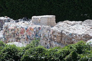 recycle paper, waste paper, tj's green adventure