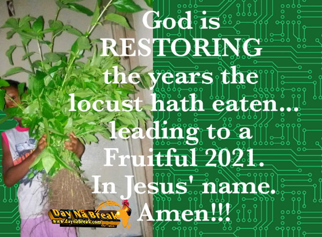 Our Year of RESTORATION