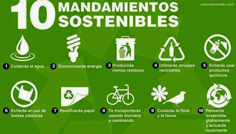 Frases del dia medio ambiente for Eliminar electricidad estatica oficina