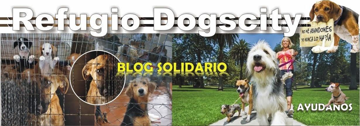 REFUGIO DE ANIMALES SIN ANIMO DE LUCRO DOGSCITY