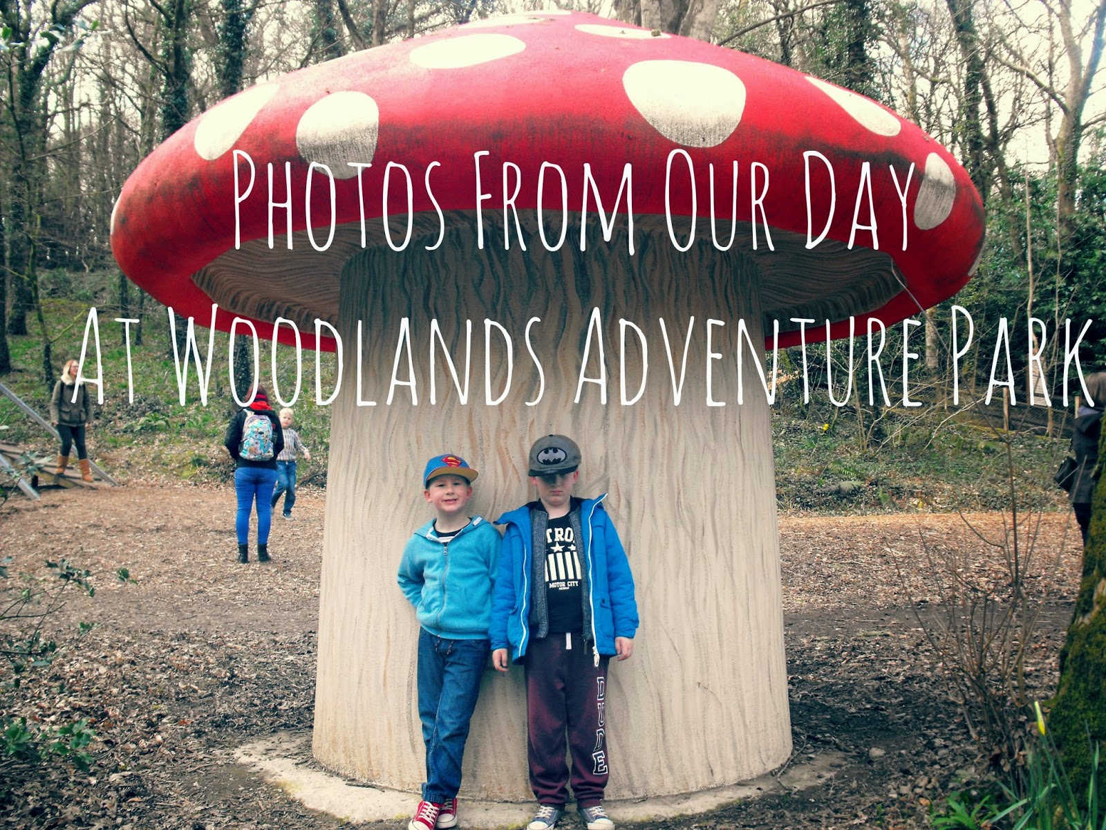 woodlands, devon, adventure, park, mushroom, parent, blogger