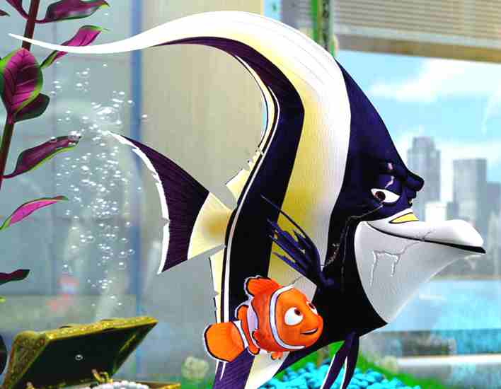 Finding nemo fish characters the image for Nemo fish tank
