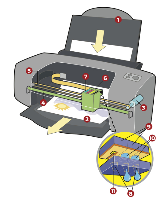 how to clean hp inkjet printer nozzles