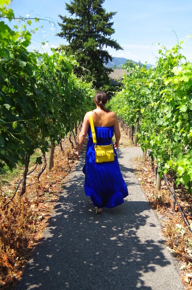The Vineyard at La Frenz -BTBU