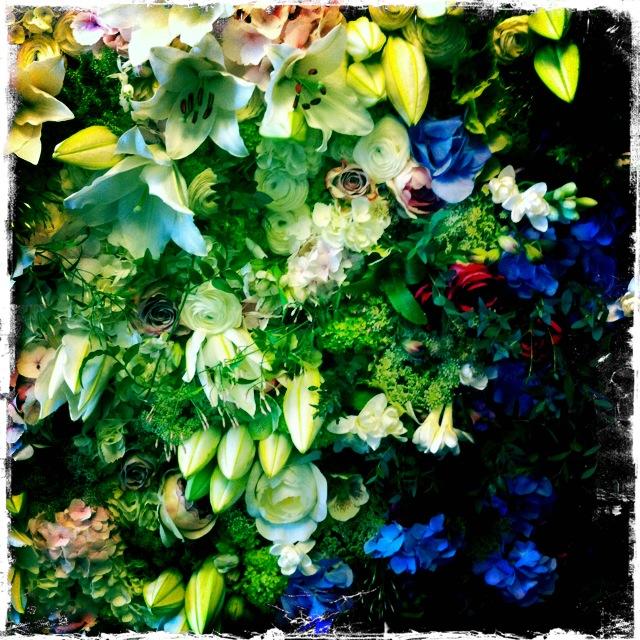 panneau de fleurs fraîches pour les Habilleurs / Cacharel