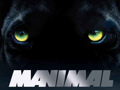 LA série Manimal