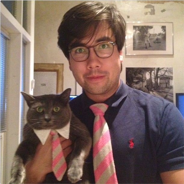 Funny cat pictures part 14, cat in tie