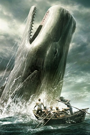 Poursuites Moby-dick_290x435