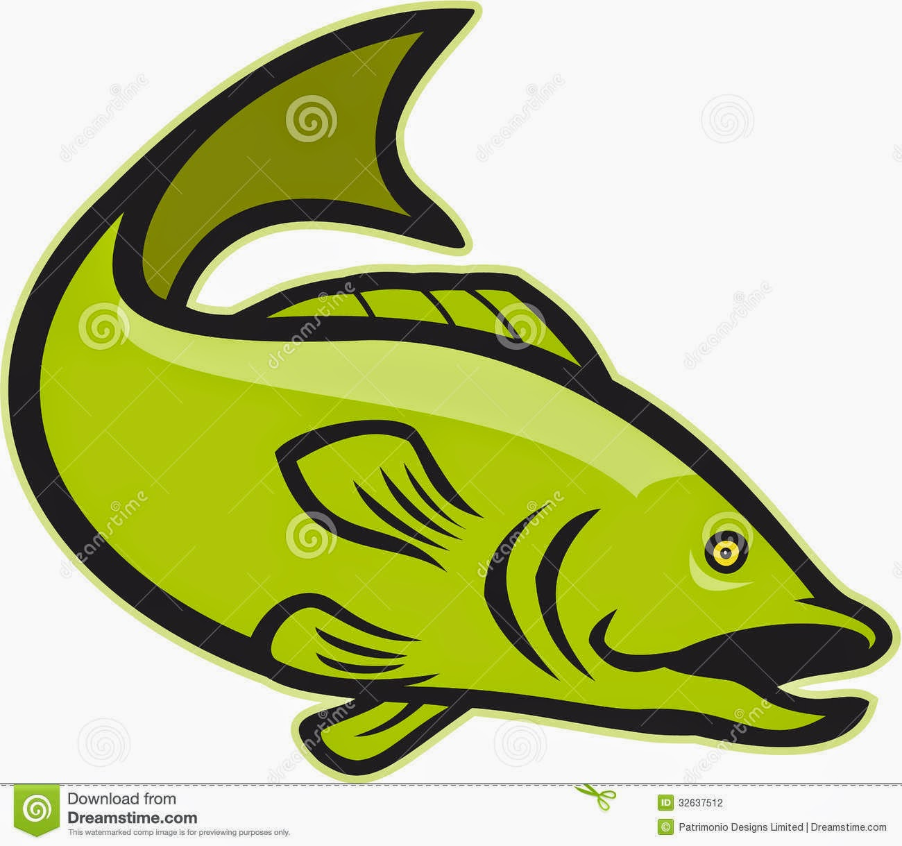 Cartoon Bass Fish Images