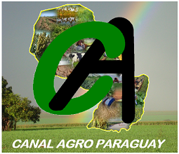 http://canalagroparaguay.blogspot.com.br/