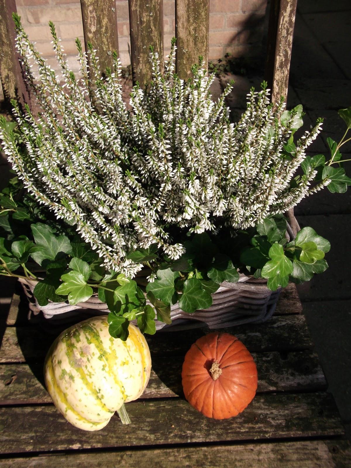 Van katoen en zo: herfst sfeer