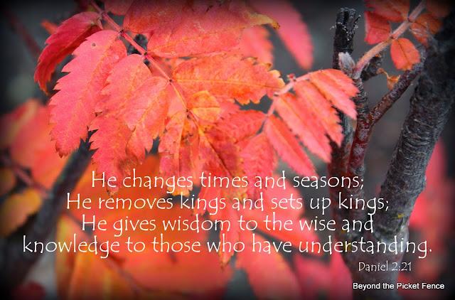 sunday verses http://bec4-beyondthepicketfence.blogspot.com/2013/10/sunday-verses_20.html