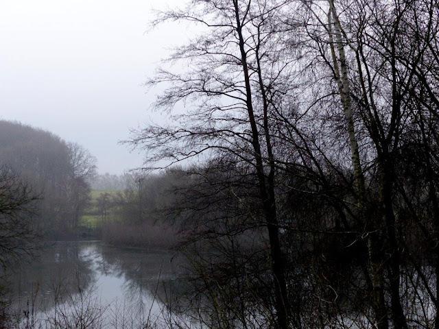 wandern Hunderunde Naturlehrpfad Alte Zechenbahn Recklinghausen Oer-Erkenschwick Januar bedeckter Himmel
