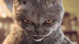 http://2.bp.blogspot.com/-ATq7qlK0Nz8/TglYV-Z2o_I/AAAAAAAABl4/NnhlRj0lm2k/s1600/cat+angry.jpg