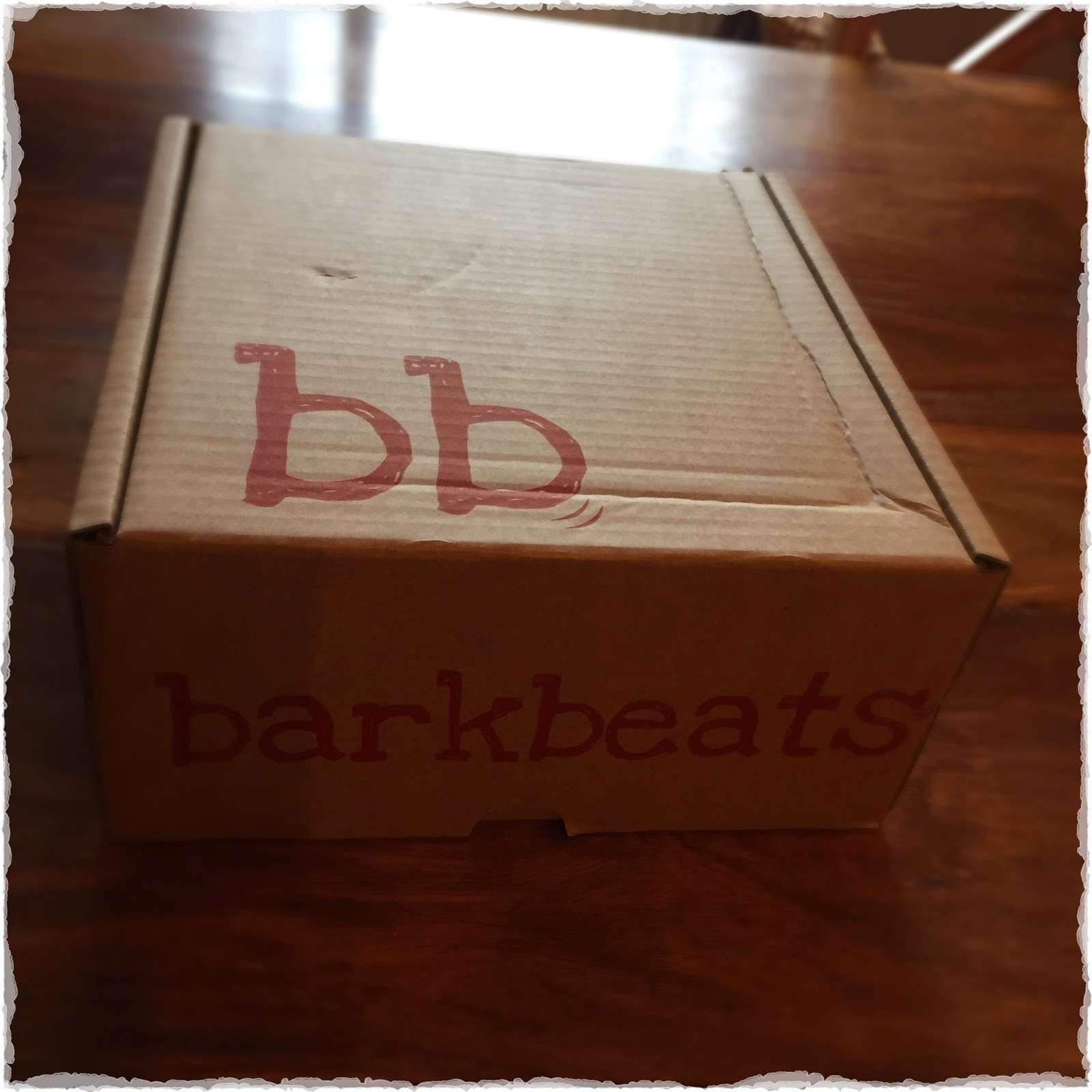 Photo of barkbeats box