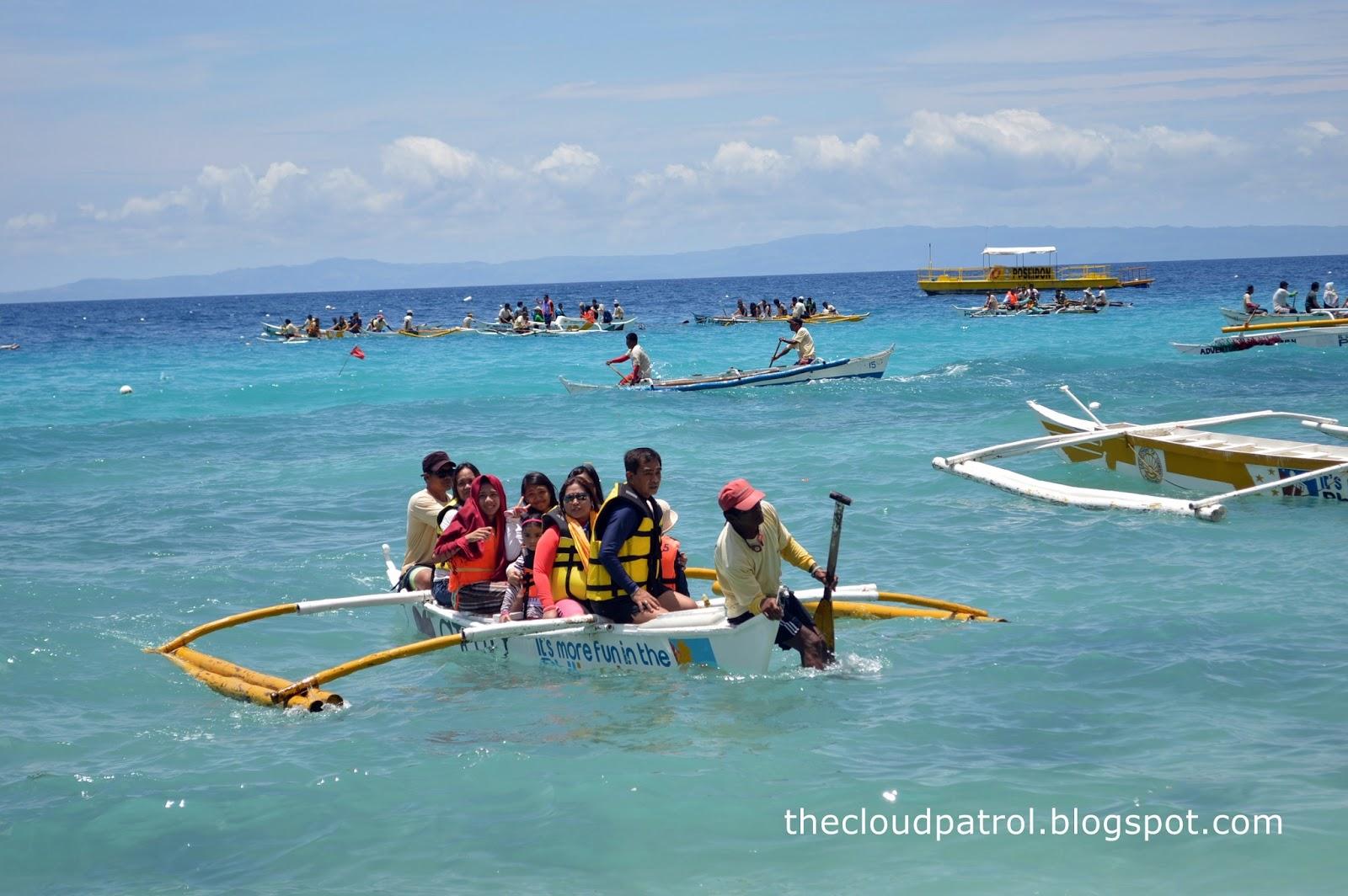 Butanding, whale shark, cebu, oslob, philippines, watching,