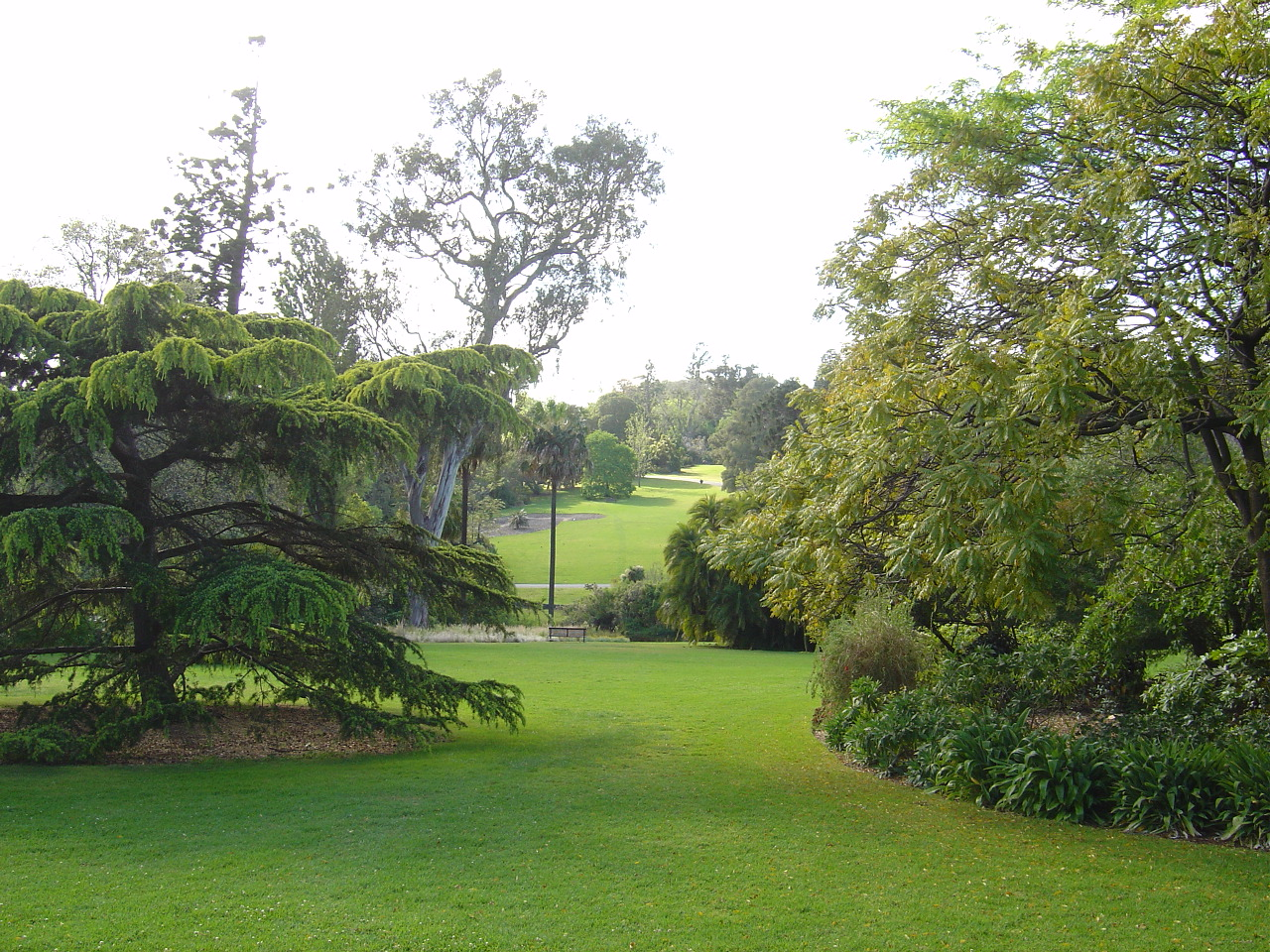 World visits best visit place botanical garden for Gardening australia