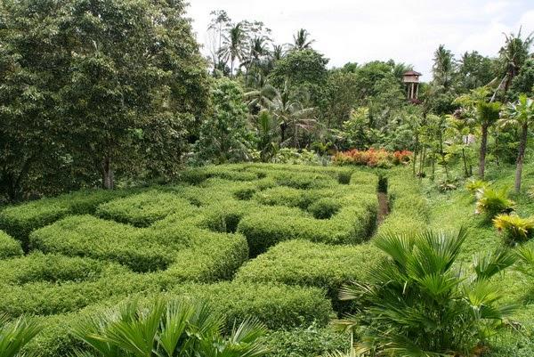 wisata bali Botanical Garden Ubud