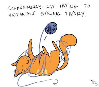 На данный момент не было обнаружено ни одного экземпляра кота обфусцированного. Исходя из названия, можно сделать вывод что процесс обфускации котов несет интегральный характер, и не наносит ущерба котам, полностью сохраняя их дееспособность во всех смыслах.