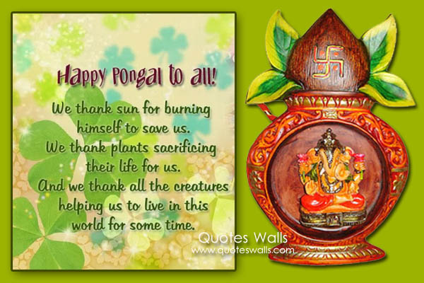 Pongal greeting sms gallery greeting card designs simple happy pongal wishes sms message pictures wallpapers quotes greetings m4hsunfo