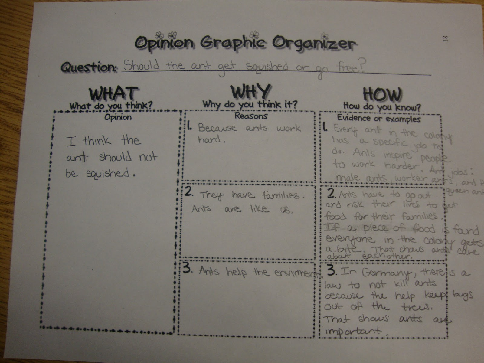 opinoin essay