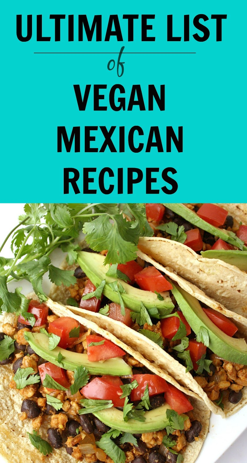 The garden grazer ultimate list of vegan mexican recipes between my everlasting love of mexican food and cinco de mayo approaching i set out to make a small round up of vegan mexican meals that little list forumfinder Images