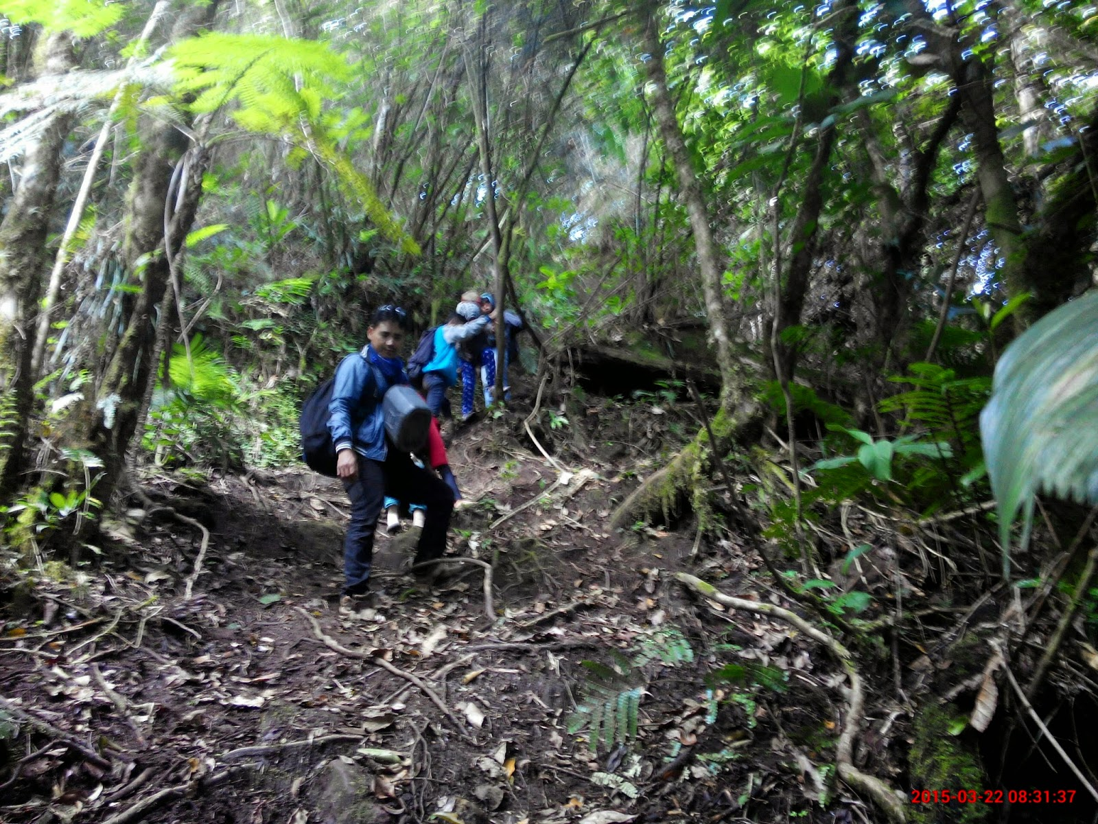 track pendakian gunung seminung