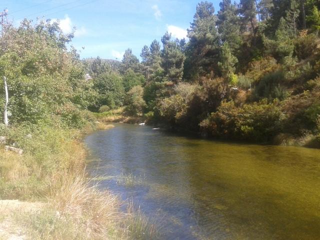 Rio Alva no Sabugueiro