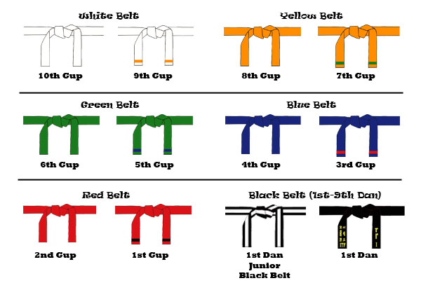 Black Belt Essay Examples