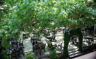Yalova Termal Kaplıcaları Çınar Otel
