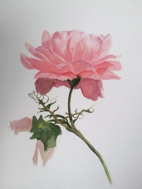 pintura de flores acuarela