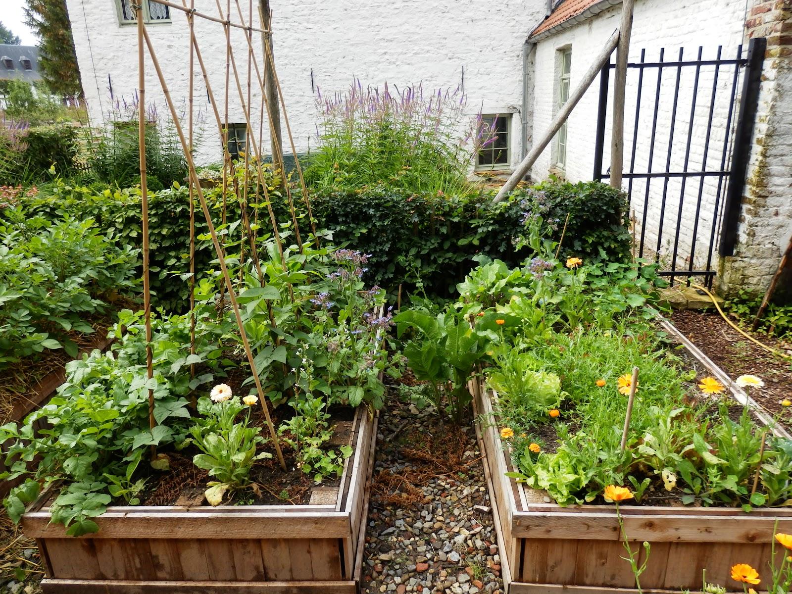 Le jardin des moines hugelkultur en bac l 39 important c for Le jardin aux epilobes