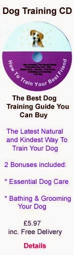 Dog Training CD