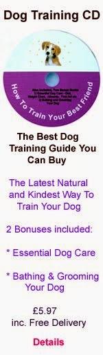 Dog Training CD