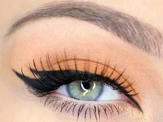 eyeliner felino