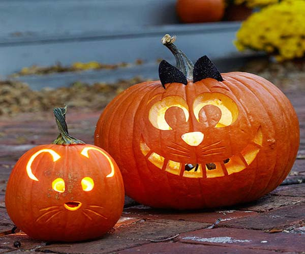 Funny pumpkin carving ideas and patterns for halloween for Easy fun pumpkin carving idea