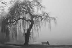 silencio para Cosas que siento