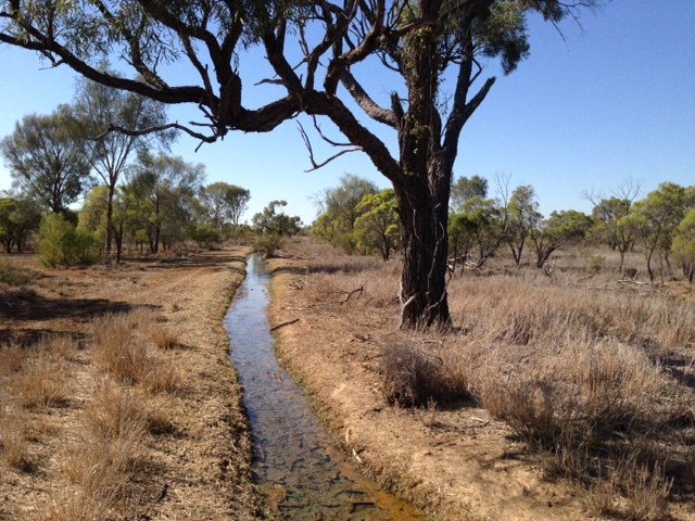 thermal ecology research Queensland outback